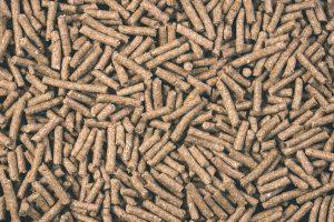 Ζωοτροφές Αιγοπροβάτων Βοοειδών | ΜΗΔΙΚΗ ΒΟΡΕΙΟΥ ΕΛΛΑΔΟΣ ΑΒΕΕ
